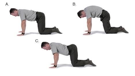 bài tập giảm đau lưng cho người bị thoát vị đĩa đệm 4