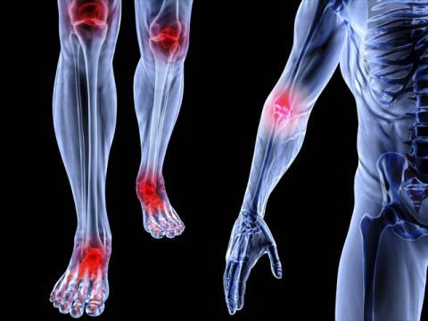 hệ thống xương khớp